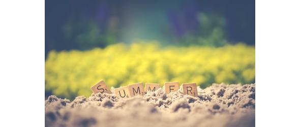 summer blog2