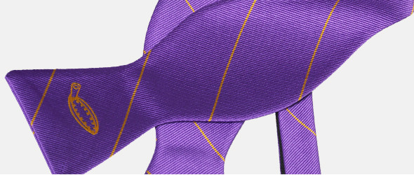 vlinderdassen met logo Plaatje